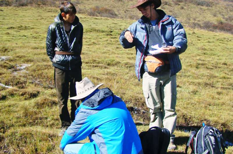 In eastern Tibetan forest, signs of tree growth amid climate change