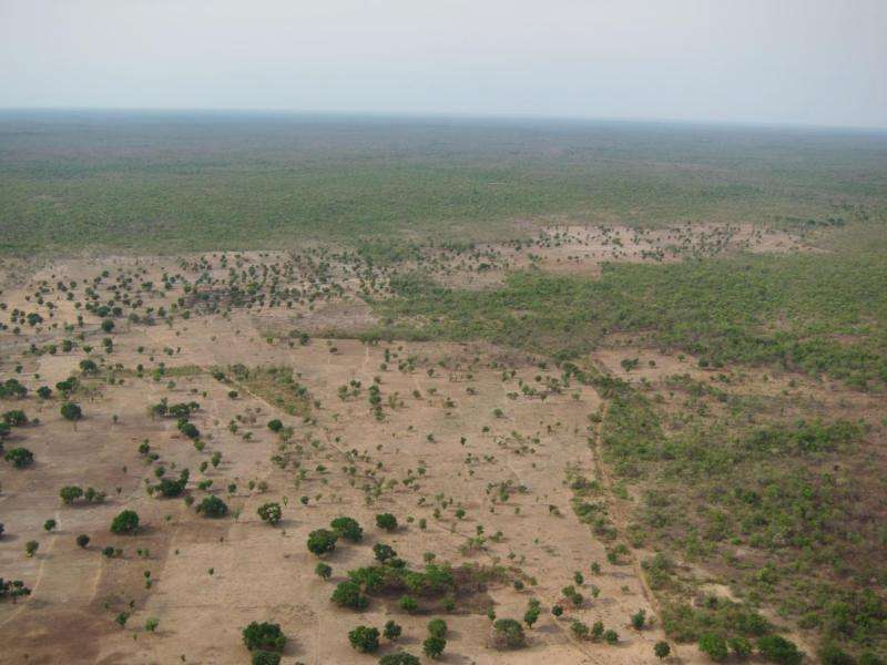 Is conservation aid preventing deforestation?