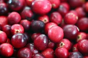 Juicy news about cranberries