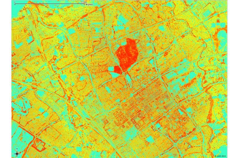 Laser technique boosts aerial imaging of woodlands