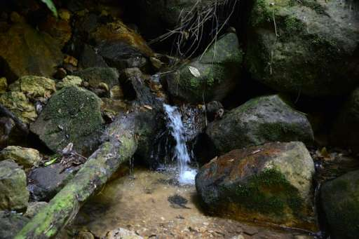 La Tigra park boasts a mountain from which run more than 70 creeks carrying water used by nearly a third of Tegucigalpa's one mi