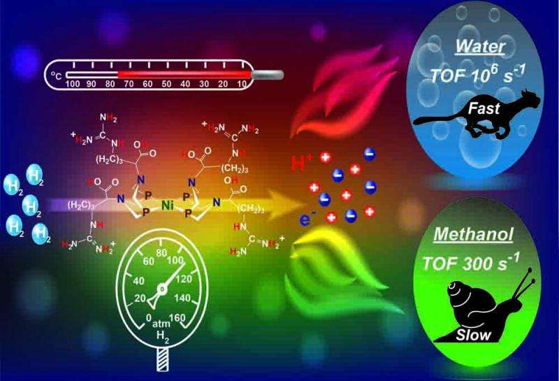 Lessons from nature inspire breakthrough in catalyzing electricity from renewable energy