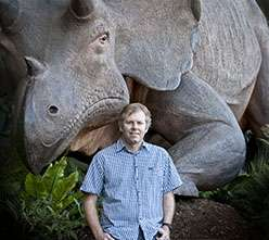 Mammals diversified only after dinosaur extinction left space
