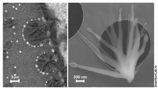 Molecular wave of nanosized metal oxide catalyst