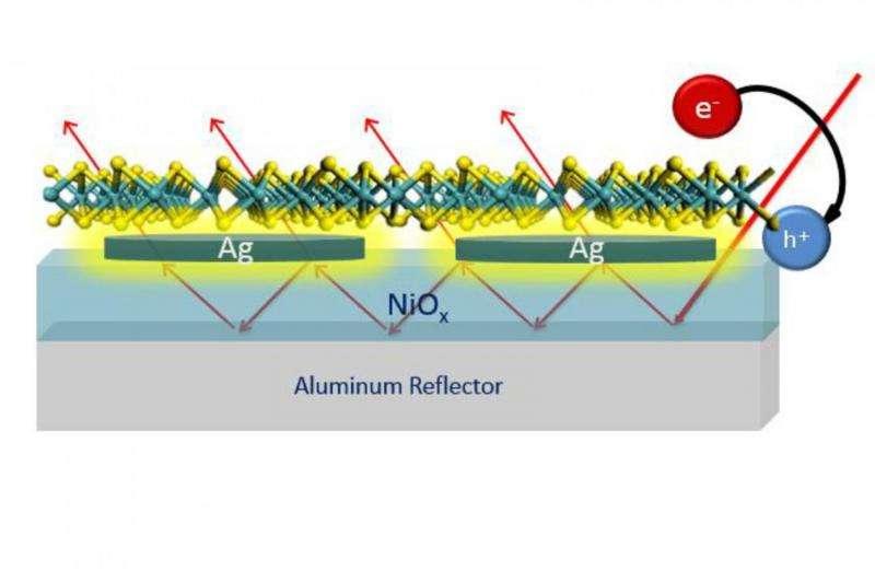 Molybdenum disulfide holds promise for light absorption