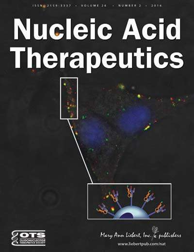 More potent, inexpensive gene silencing agents described in Nucleic Acid Therapeutics