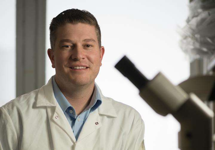 MSU discovers a new kind of stem cell