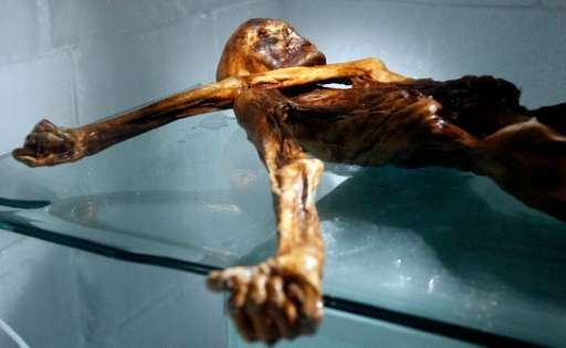 """Mummified in the ice, """"Oetzi"""", as he was later nicknamed, was a sensation, providing invaluable scientific insights th"""