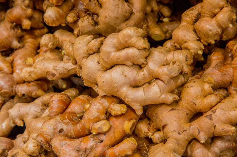 Nano-lipid particles from edible ginger could improve drug delivery for colon cancer, study finds