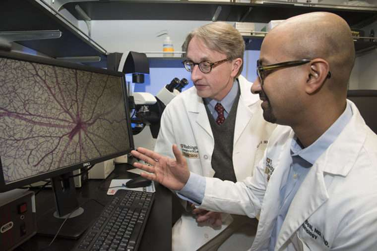 Nerve injury appears to be root of diabetes-related visionloss