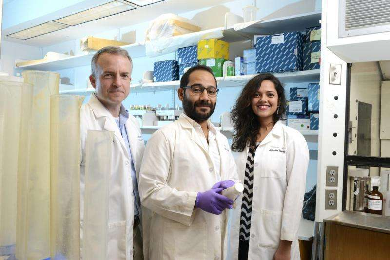 New cytoplasmic role for proteins linked to neurological diseases, cancers
