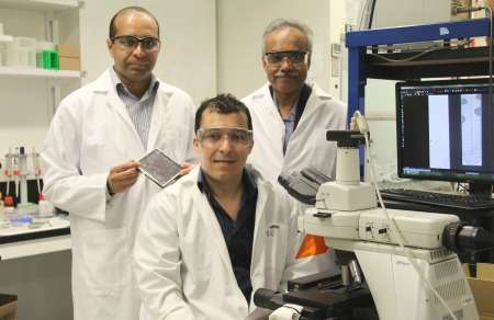 New device detects bacteria and tests for antibiotic resistance