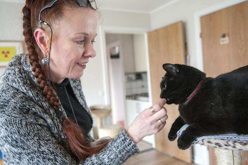 New project seeks to understand what your cat is trying to say