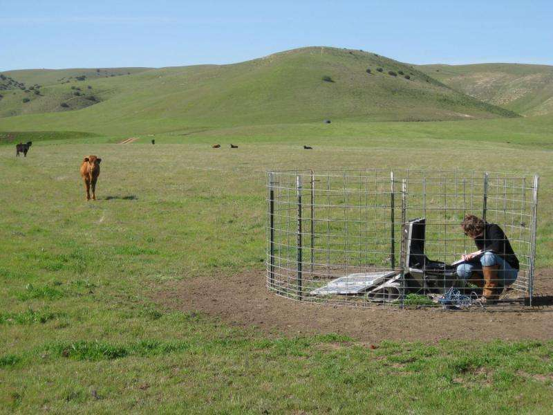 New study compares shallow earthquakes and deeper tremors along southern San Andreas fault