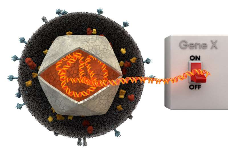On the path to controlled gene therapy