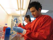 """Otago research uncovers role of """"cancer bubbles"""" in deadly clotting"""