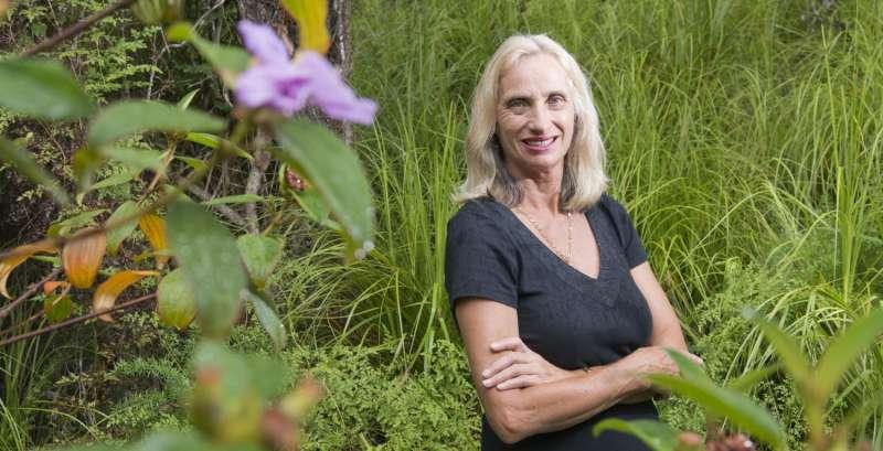 Paperbark tree to unlock climate change