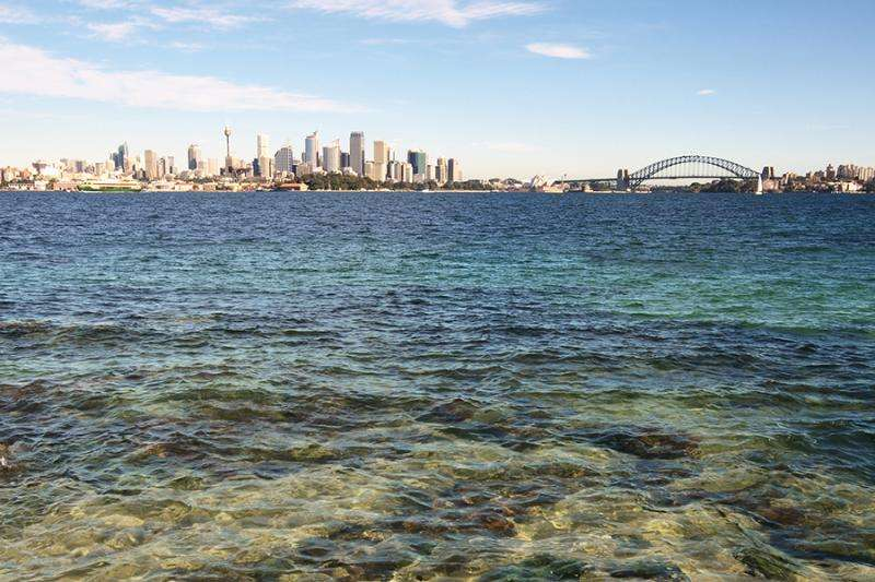 Pathogens in Sydney Harbour like it hot but not too salty