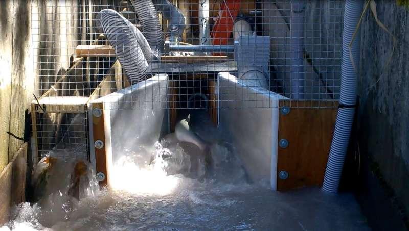 PNNL helping make hydropower cheaper, more fish-friendly