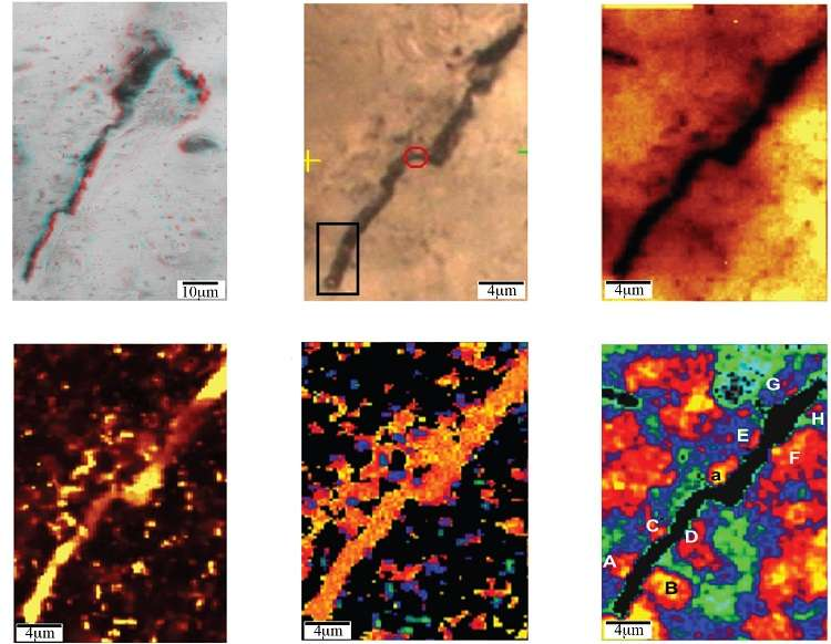Portion of ancient Australian chert microstructures definitively pseudo-fossils