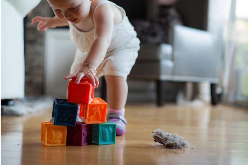 Potentially harmful chemicals widespread in household dust