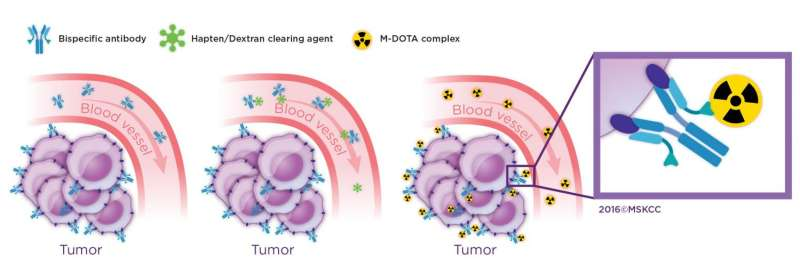 Pretargeted radioimmunotherapy may eliminate colorectal cancer