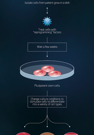 Production of iPS cells
