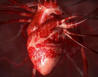 Protein supplement may cut risk of heart disease and stroke