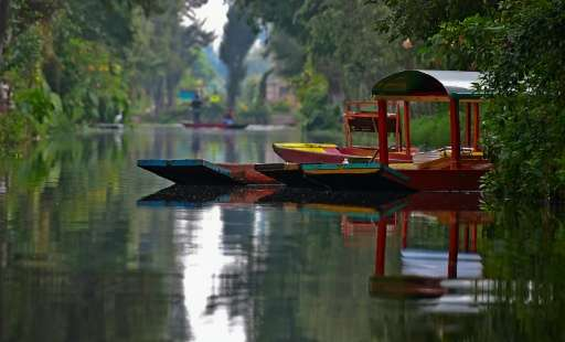 """""""Trajineras"""" - traditional flat-bottomed river boats - can be seen in the Xochimilco natural reserve in Mexico City"""