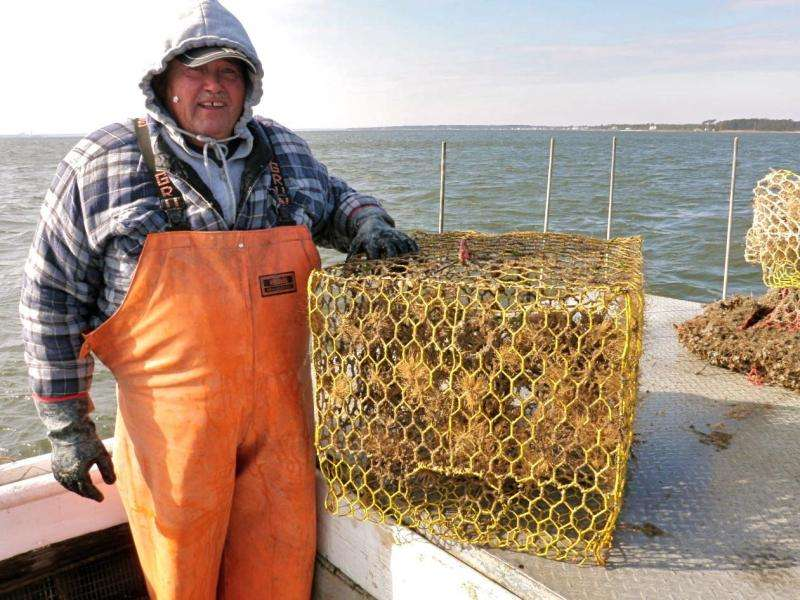 Removal of derelict fishing gear has major economic impact