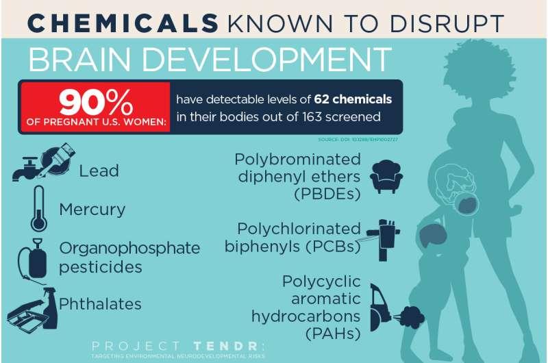 Report: A host of common chemicals endanger child brain development