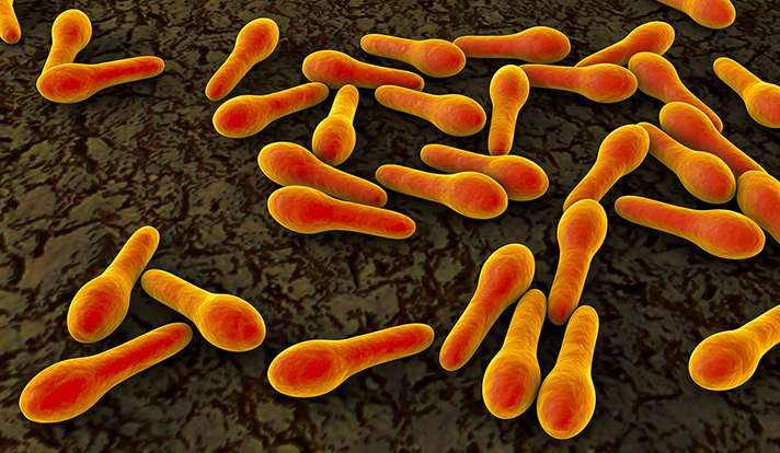 Research in the news: Yale study estimates transmission of deadly C. diff infection