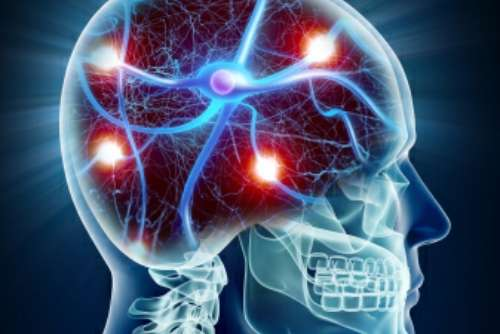 Research on stress hormone effects on the brain reveals unexpected findings