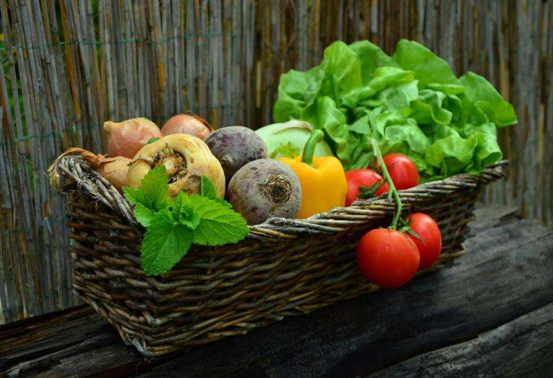 Research proves that vegetables fried with olive oil have more healthy properties than boiled ones