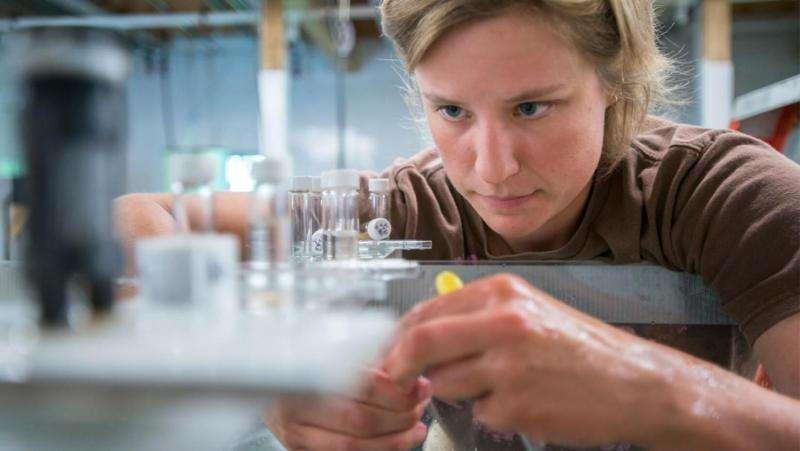 Scientist learns population size of scallops affects fertilization success