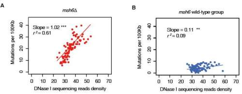 Selective protection of genetic information by epigenetic system