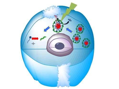 Self-assembled nanostructures hit their target
