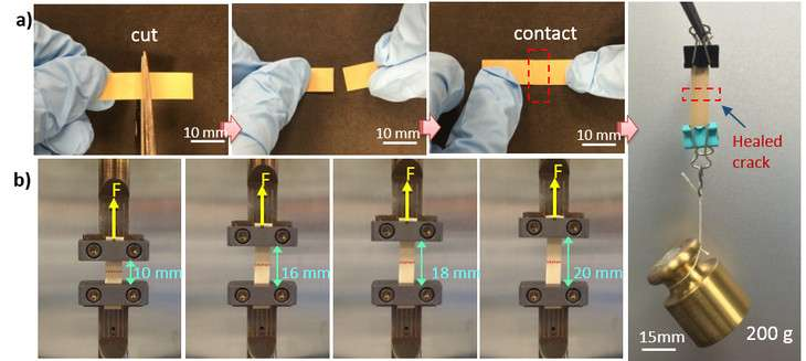 Self-healing, flexible electronic material restores functions after many breaks
