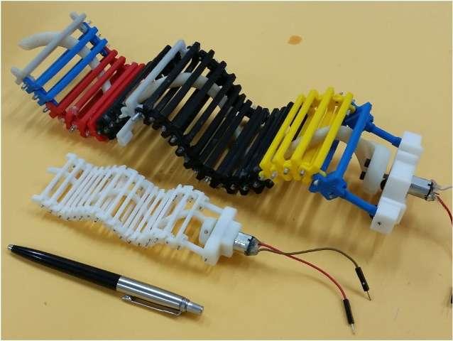 Single actuator wave-like robot developed