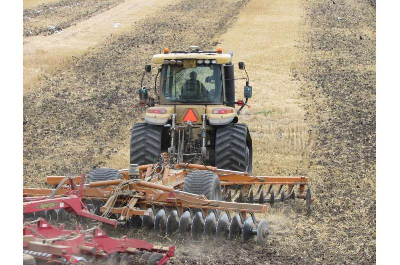 Soil microbes flourish with reduced tillage