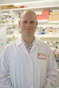 Solving a genetic mystery in type 1 diabetes