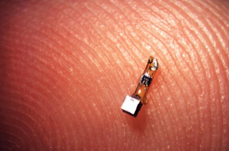 Sprinkling of neural dust opens door to electroceuticals