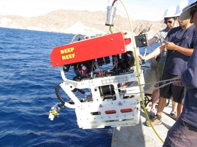'Squishy' robot fingers aid deep sea exploration
