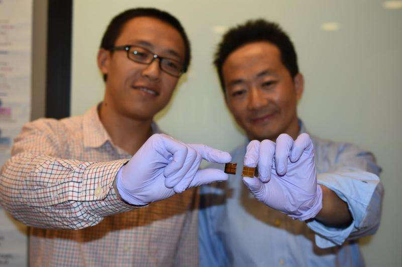 Stability challenge in perovskite solar cell technology