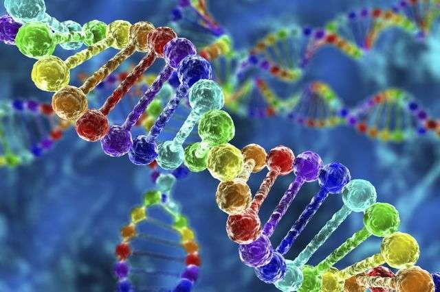 Study concludes insurers should provide better coverage for cutting-edge genetic test