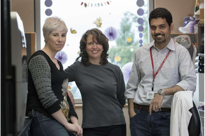Study: Enhancing cancer response to radiation