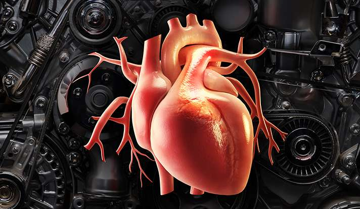 Study gets to the heart of heart failure