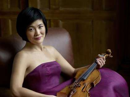 Studying a virtuoso violinist's brain with fMRI