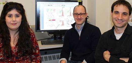 Syracuse chemists combine biology, nanotechnology to create alternate energy source
