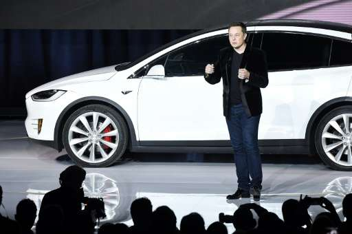 Tesla founder Elon Musk says electric car makers will have to entice buyers in order to ride out the challenge of plunging oil p
